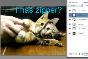 ihaszipper 300x201 How can I edit pictures online without software?
